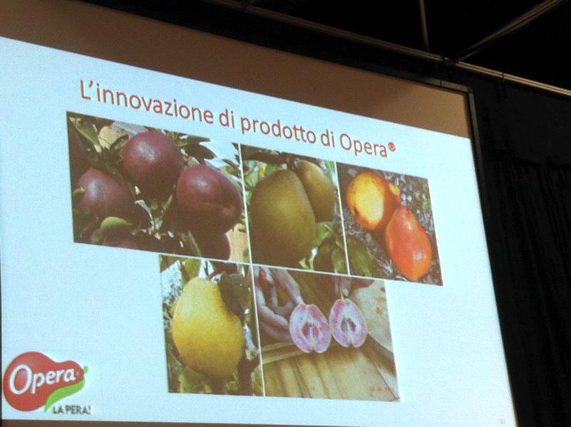 Opera l'innovazione varietale