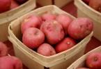 Patata Rossa Colorito Igp