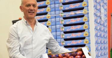 Frutta Emilia Romagna. 2015 anno difficile. il Bilancio di Giancarlo Minguzzi