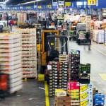 Dai mercati: clementine spagnole a 2 euro, primi cachi e melagrane