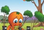 Outspan Sam – Capespan, Africa del Sud. Una campagna pubblicitaria destinata ai bambini che, tra le altre cose, spiega, con un video, il cammino che la frutta percorre per arrivare a casa loro.