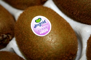 Fruit Logistica 2016 - Kiwi Jingold Bliss