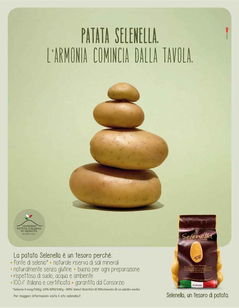 PatataSelenella_Armonia