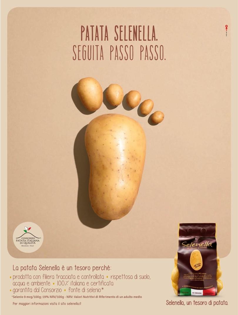 PatataSelenella_PassoPasso