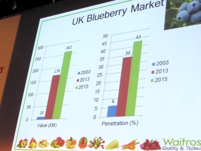 La crescita delle vendite dei mirtilli in UK