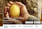 Selenella_Facebook