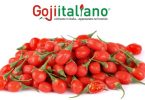 Gojiitaliano_fruttaWeb