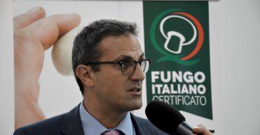 fungocertificatoitaliano_gdo_mariomattozzi
