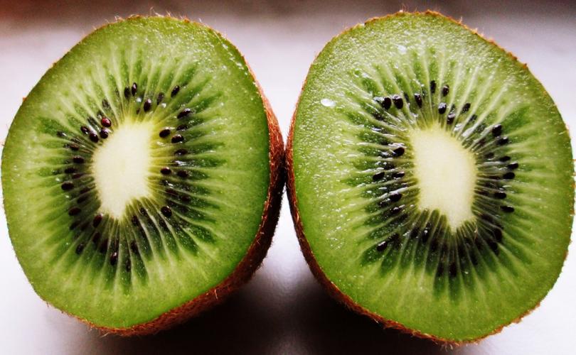 Super kiwi non OGM contro l'actinidia, ecco Green Angel