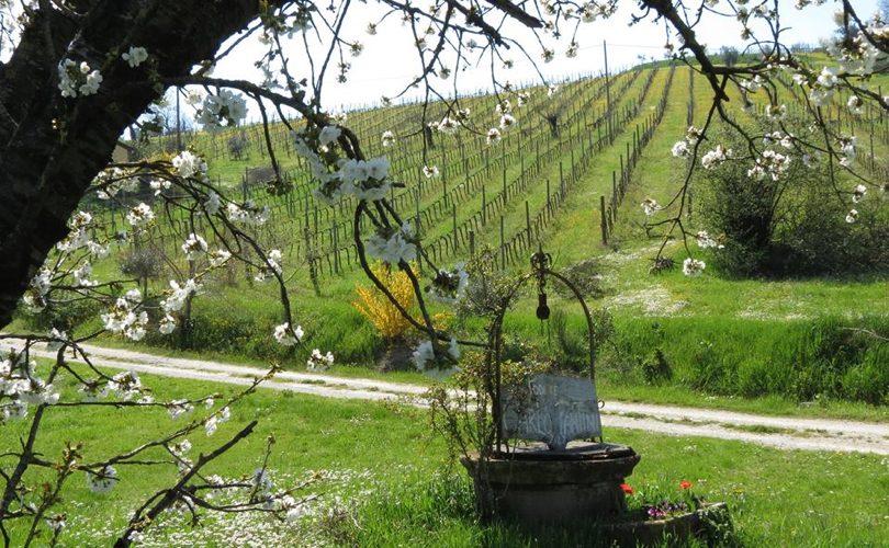 agricoltori_emiliaromagna_paesaggio