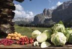 altoadige_piccolifrutti_verdura