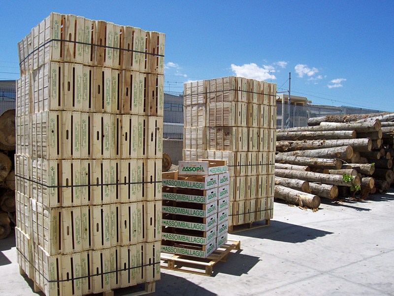 cassette in legno per ortofrutta: 400 milioni in italia, cresce del