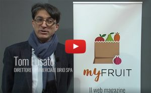 Tom Fusato, Brio Spa