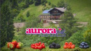 AuroraFruit