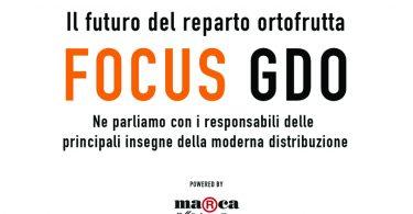 Focus GDO. Il futuro del reparto ortofrutta