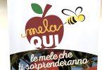 MelaQui_Gullino