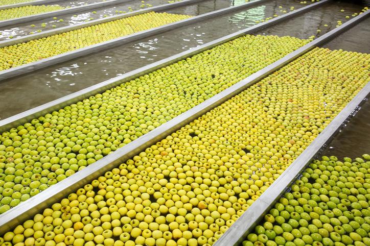 Lavorazione mele