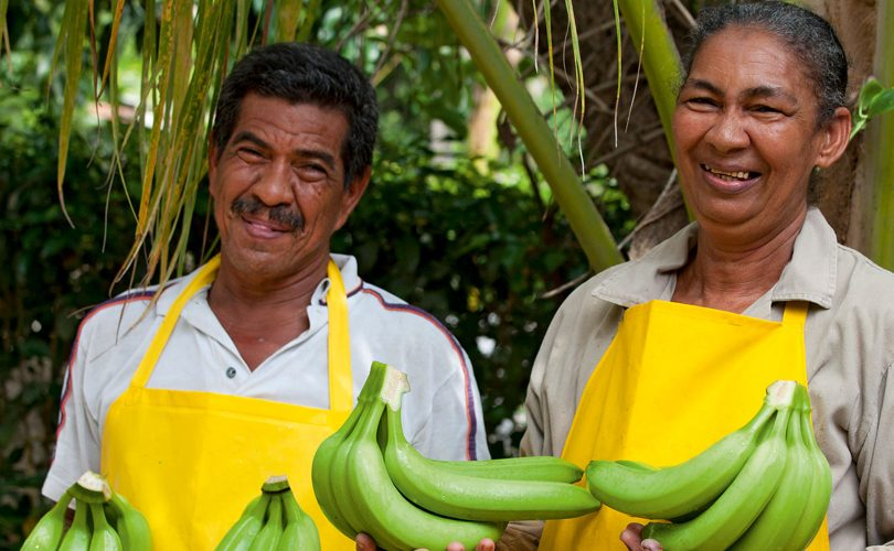FairtradeBanane2016