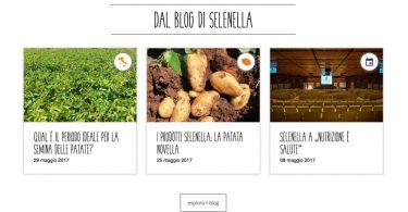 Selenella_Blog_Ricette