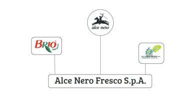 AlceNeroFrescoSpa