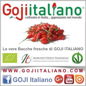 Goji_lat2_300x300_17-31lug