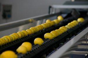 Limone di Siracusa Linea di Lavorazione