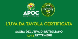 APOC_Salerno_TopLat_20-27sett