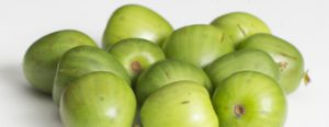 NergiOrtofruit