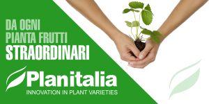 planitalia_lat314gen-11feb