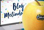 MelindaBlog