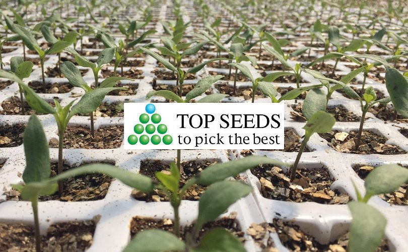 TopSeedsInternational_FruitLogistica2019