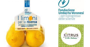 Citrus_Limoni_UmbertoVeronesi
