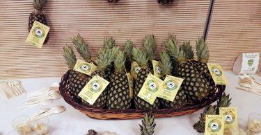 AnanasDolcettoTogo
