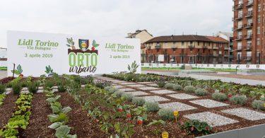 LidlOrtiUrbani_Torino