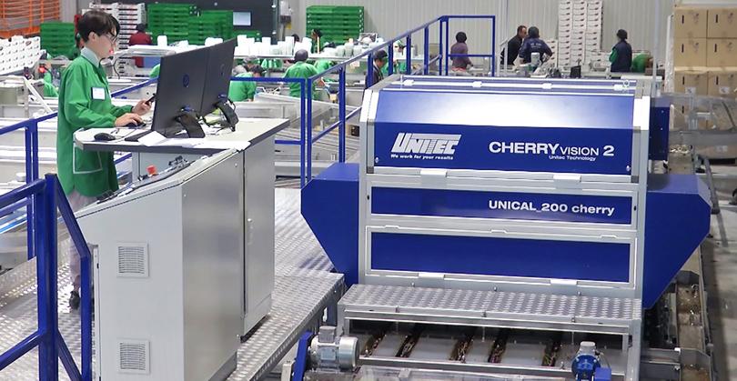 UNITECMelinda_CherryVision2
