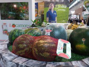 MeloneGavina_OrtoEleonora_Campidanese