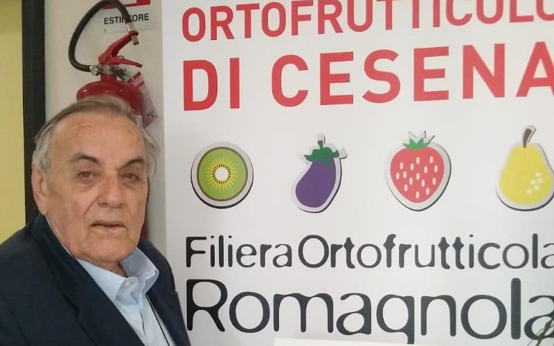 Domenico Scarpellini