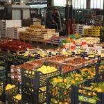 Dai mercati: sale il prezzo di fragole e arance, primizie alle stelle