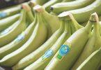 BananeBioCompagnieFruitiere