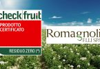 Romagnoli_CheckFruit_ResiduoZero