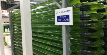 AlgaEnergy_FruitAttraction