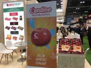 MeleCandine_Apofruit_FruitAttraction