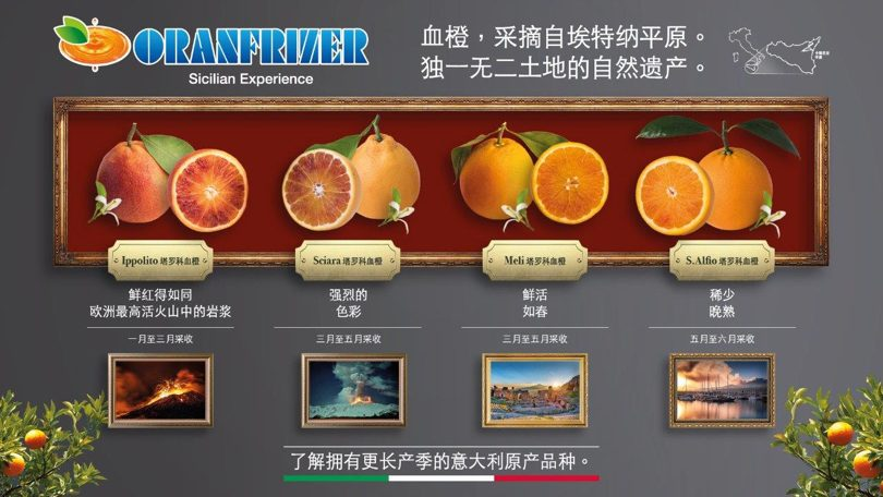 Oranfrizer_China