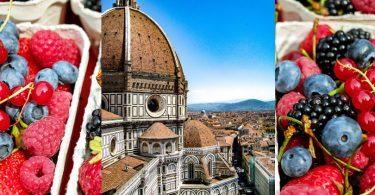 OsservatorioPiccoliFrutti_Firenze