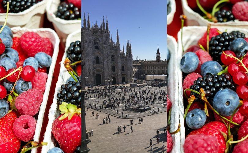 OsservatorioPiccoliFrutti_Milano