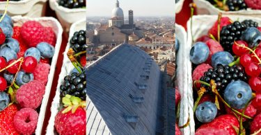 PiccoliFrutti_Padova