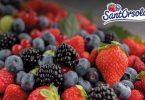 SantOrsola_FruitLogistica2020