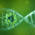 """Export e diffidenza dei consumatori, ecco i """"nuovi casi"""" da coronavirus"""