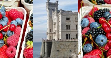 osservatorio piccoli frutti - Trieste