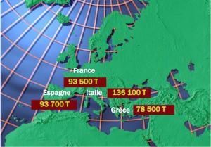 Albicocche, previsione produzioni 2020 in Europa